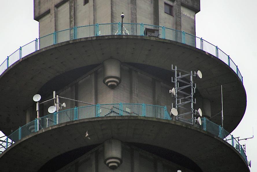 Rondom de toren 0401_m10