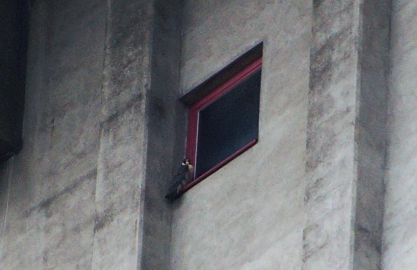 Rondom de toren 0401vk10