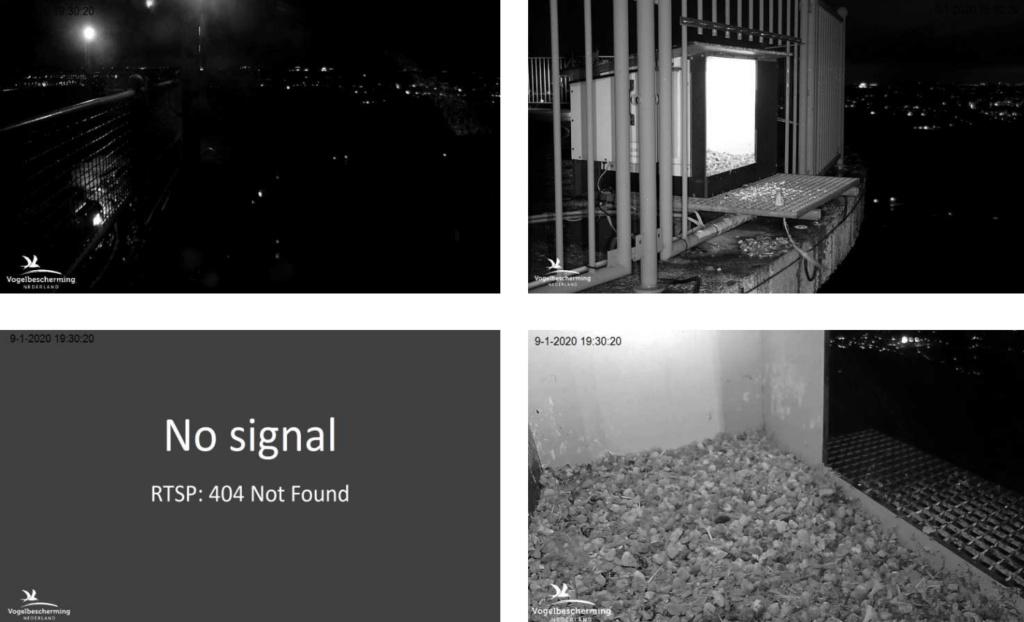 Afbeeldingen De Mortel 2020 deel 1. Vanaf 6-01-2020 - Pagina 2 0901vw10