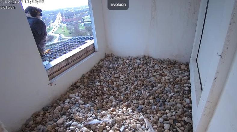 Eindhoven/Evoluon - Pagina 8 122ev10