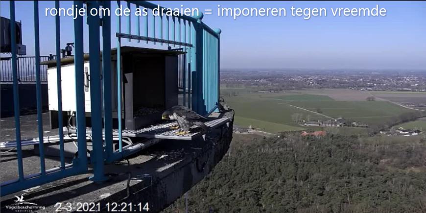 Campics vanaf start Beleef de Lente © VWGGemert/VBN - Pagina 2 23122110