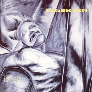 Libros de Rock - Página 10 Scream17