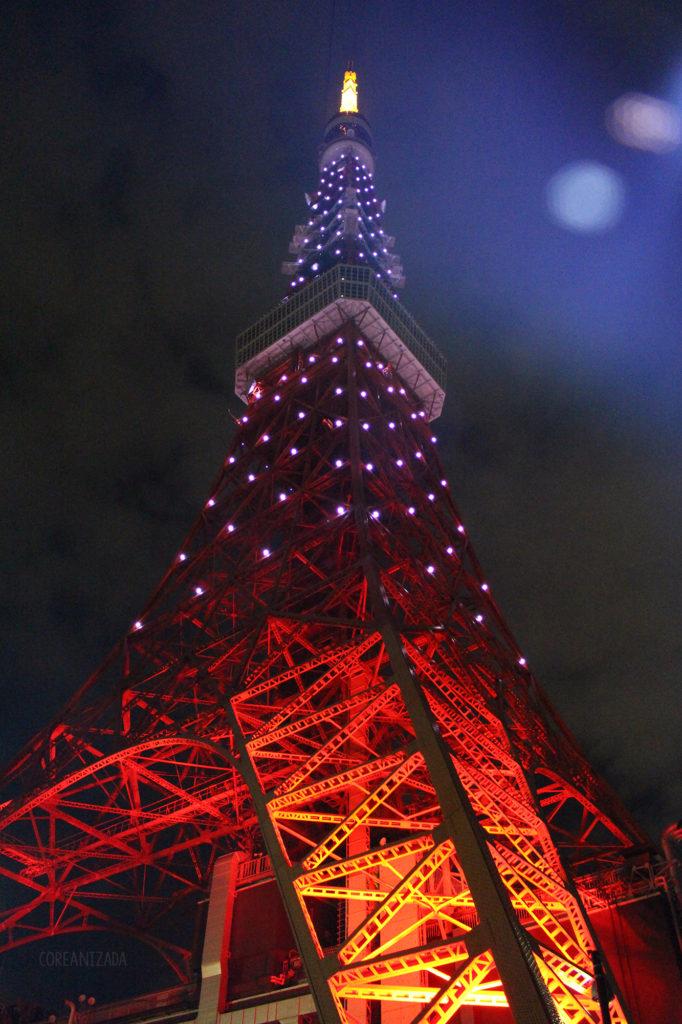 Recomendaciones TOKYO, JAPÓN - Página 15 Torre-10