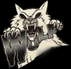 75 ESENCIALES DE LA NWOBHM: 72 - DESOLATION ANGELS Wolf_210