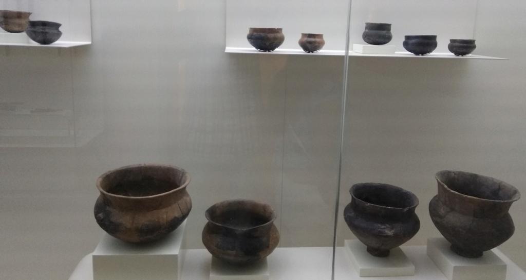 MUSEO DE LOGROÑO/LA RIOJA Img_2023