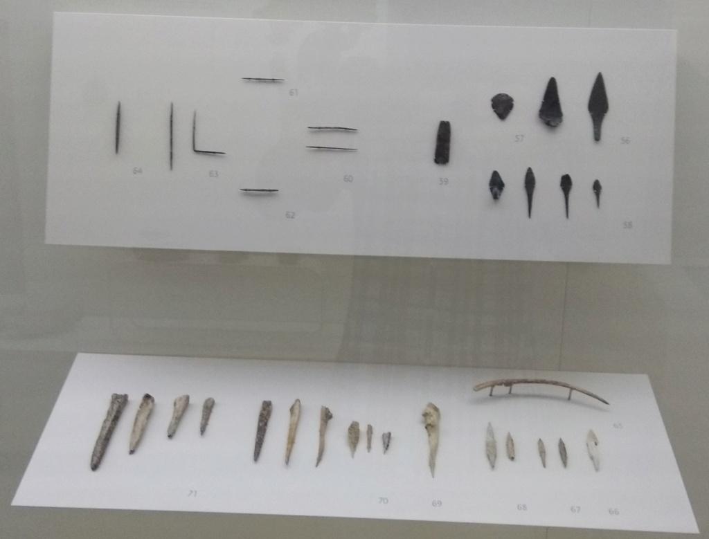 MUSEO DE LOGROÑO/LA RIOJA Img_2024
