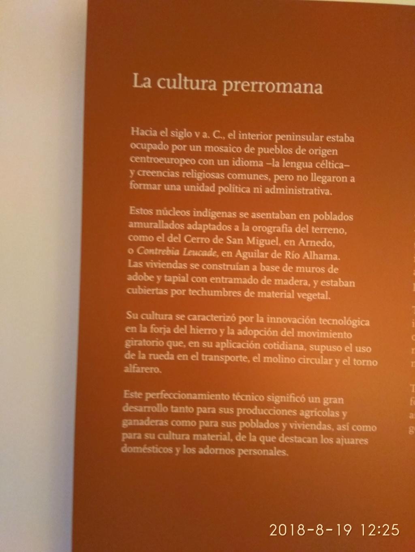 MUSEO DE LOGROÑO/LA RIOJA Img_2030