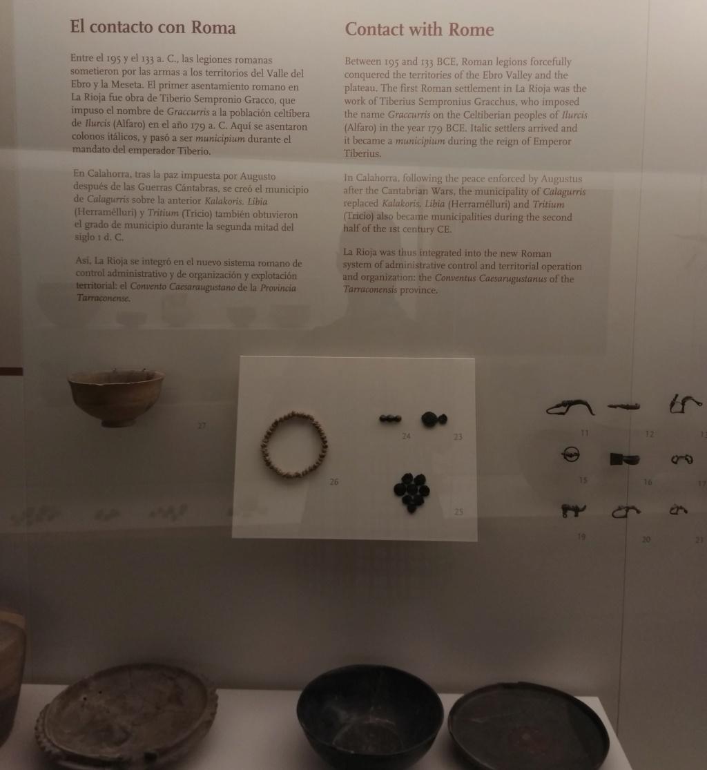 MUSEO DE LOGROÑO/LA RIOJA Img_2042