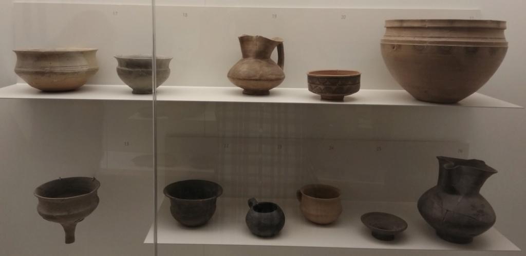MUSEO DE LOGROÑO/LA RIOJA Img_2048