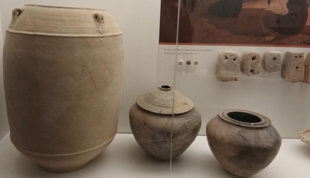 MUSEO DE LOGROÑO/LA RIOJA Img_2051