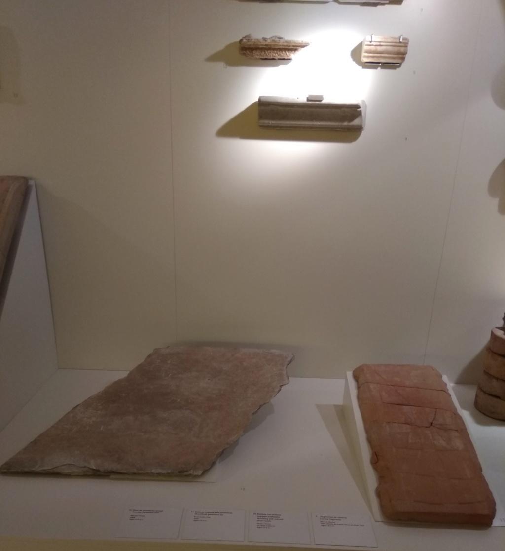 MUSEO DE LOGROÑO/LA RIOJA Img_2056