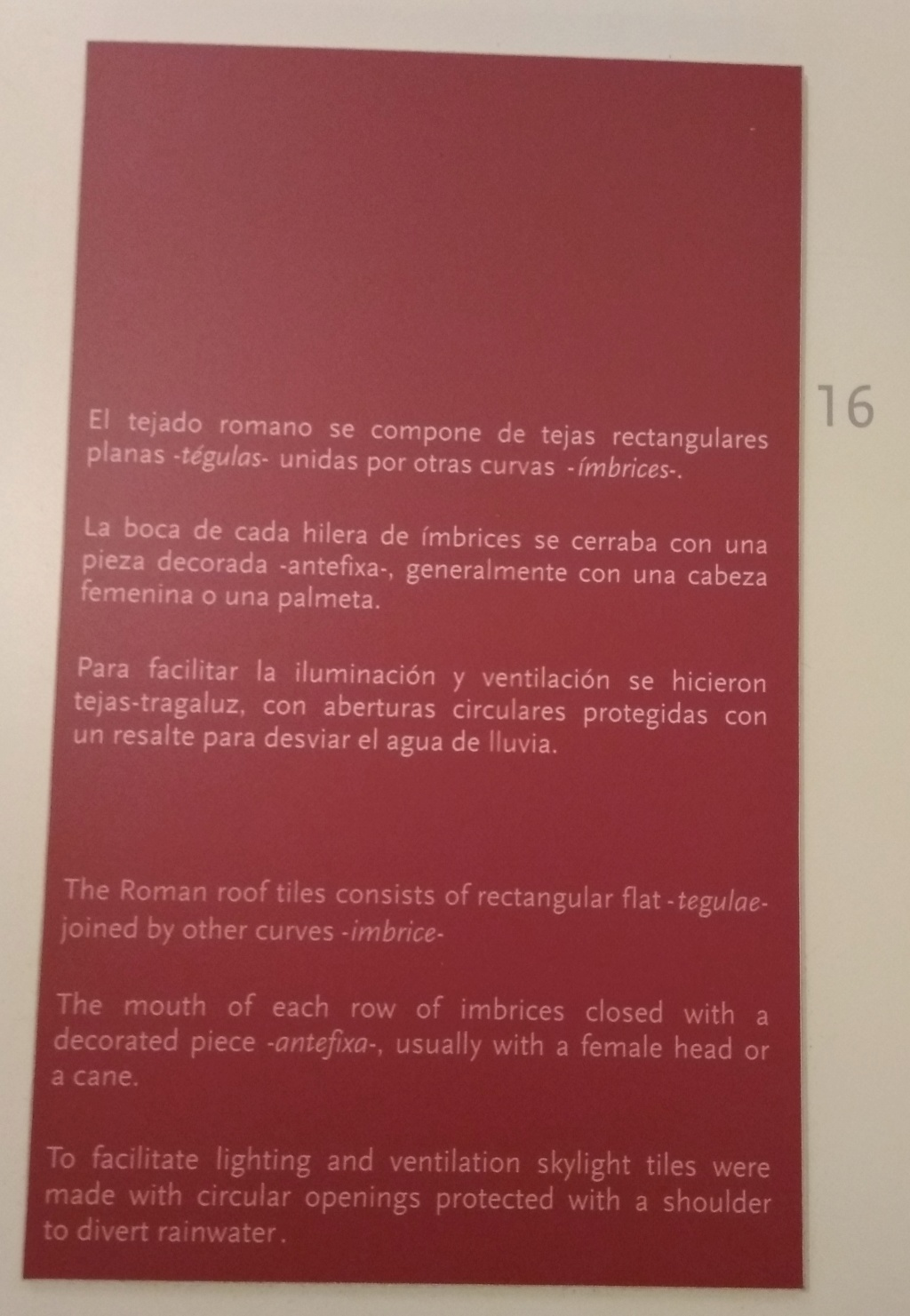MUSEO DE LOGROÑO/LA RIOJA Img_2058
