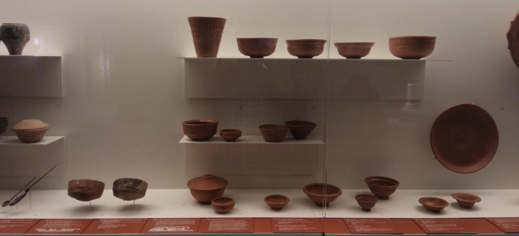 MUSEO DE LOGROÑO/LA RIOJA Img_2084