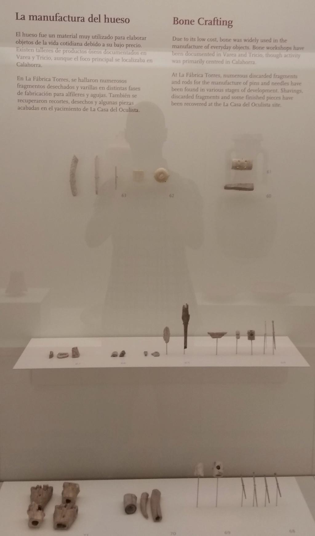 MUSEO DE LOGROÑO/LA RIOJA Img_2097