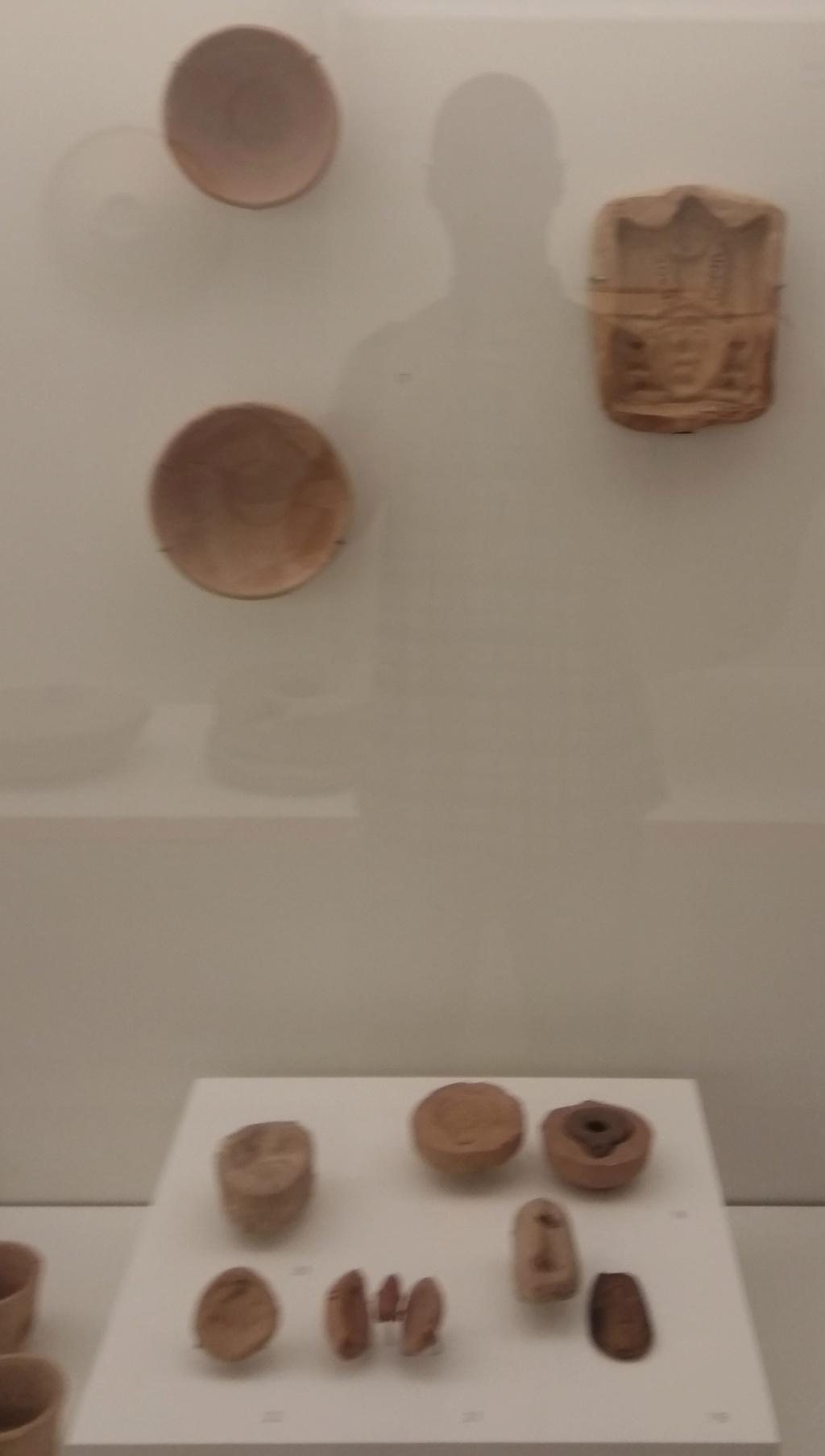 MUSEO DE LOGROÑO/LA RIOJA Img_2103