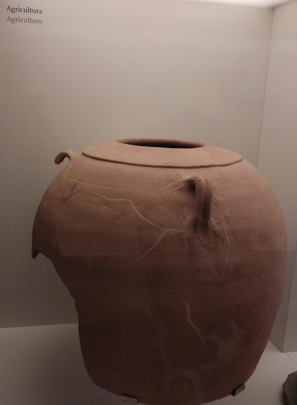 MUSEO DE LOGROÑO/LA RIOJA Img_2107