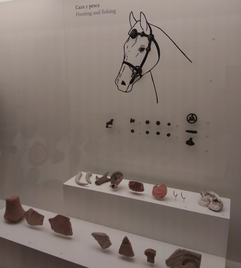 MUSEO DE LOGROÑO/LA RIOJA Img_2110