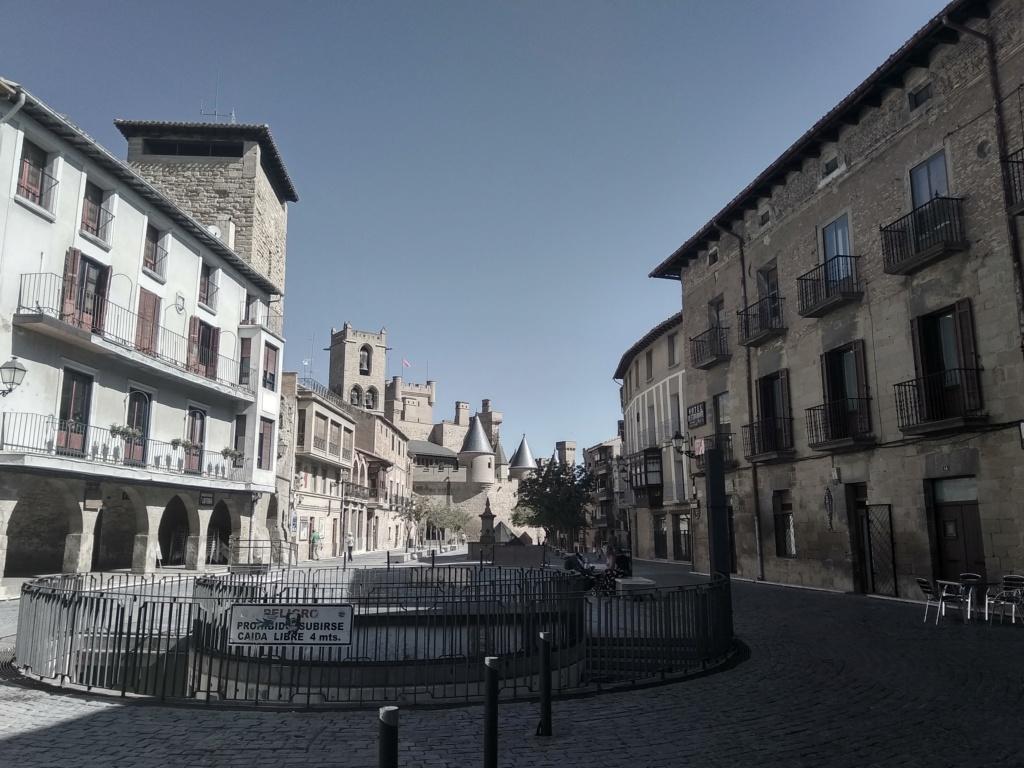 LOS PALACIOS DE LOS REYES DE ESPAÑA Img_2227