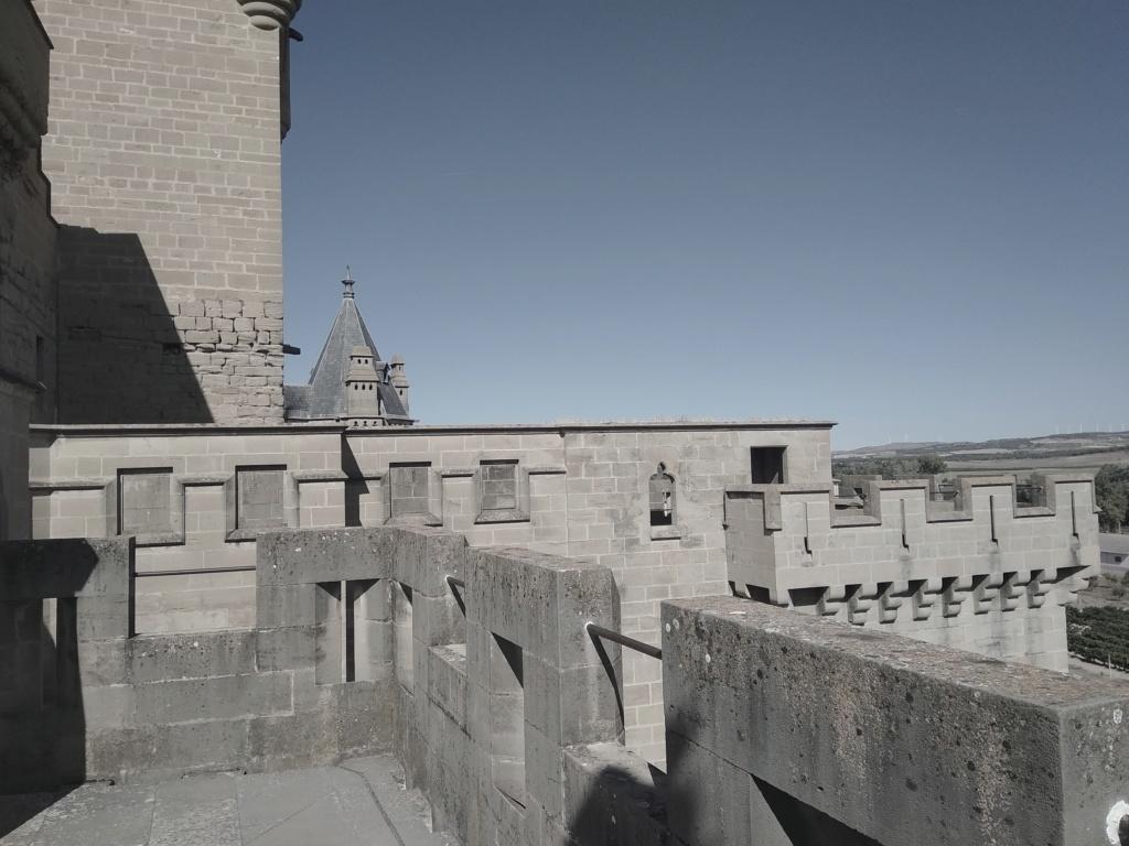 LOS PALACIOS DE LOS REYES DE ESPAÑA Img_2235