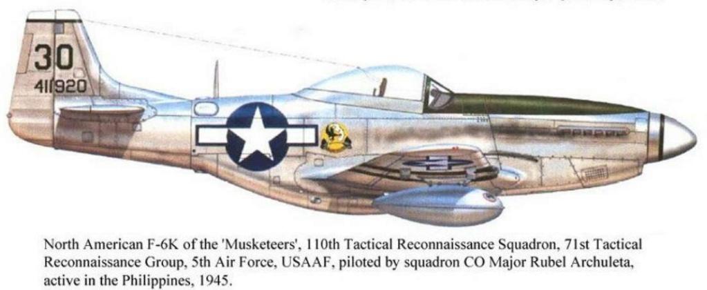NORTH AMERICAN P-51 MUSTANG Captur12