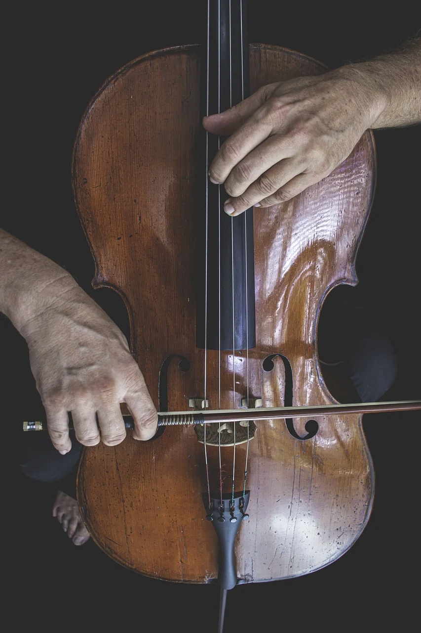 Rubys neues Ava Shöppchen (Bildbearbeitung) Cello-10