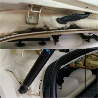 bbriccardo - Pulizia interni Lancia Ypsilon 2005 912