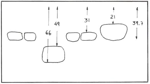 Distribución Puch Cobra Competición Distri10