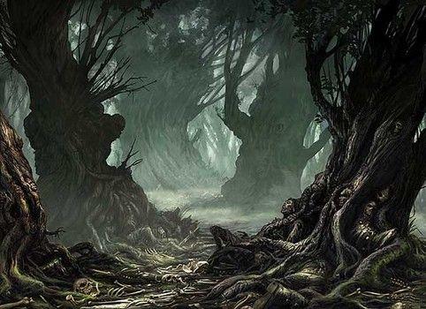 Floresta - Página 4 0cf49310