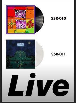 Les OST de vos jeux en vinyles - Page 14 Vinyl10