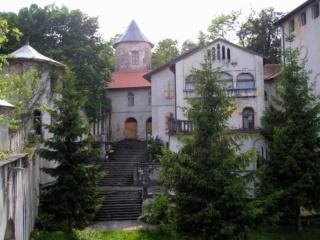 Stari dvorci i kurije u mom kraju Dvorac10