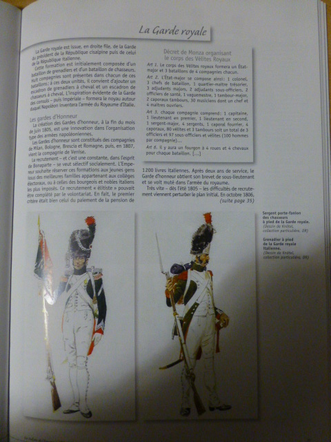 UNIFORMES des ITALIENS combattants dans l'Armée Impériale (1ère partie) P1250819