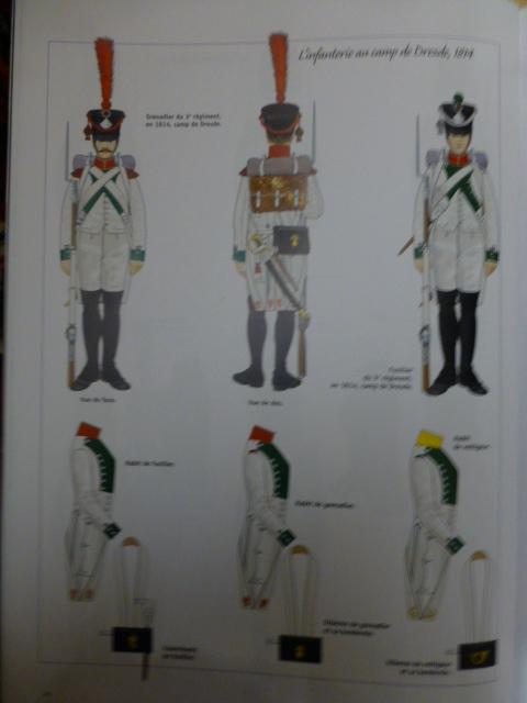 UNIFORMES des ITALIENS combattants dans l'Armée Impériale (1ère partie) P1250854