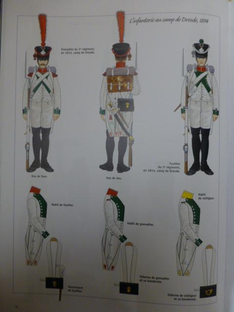UNIFORMES des ITALIENS combattants dans l'Armée Impériale (1ère partie) P1250855