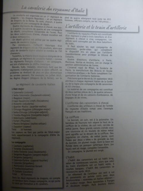 UNIFORMES des ITALIENS combattants dans l'Armée Impériale (1ère partie) P1250919