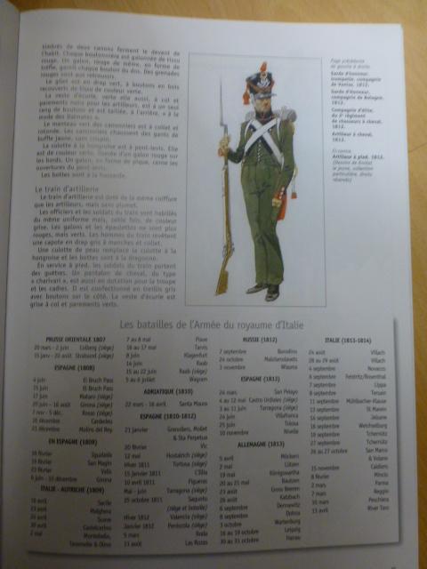 UNIFORMES des ITALIENS combattants dans l'Armée Impériale (1ère partie) P1250920