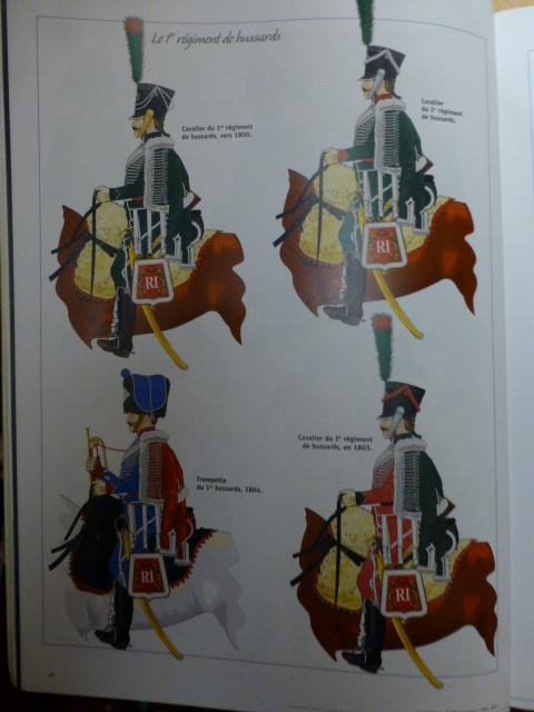 UNIFORMES des ITALIENS combattants dans l'Armée Impériale (1ère partie) P1250925