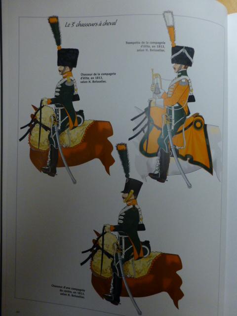UNIFORMES des ITALIENS combattants dans l'Armée Impériale (1ère partie) P1250932