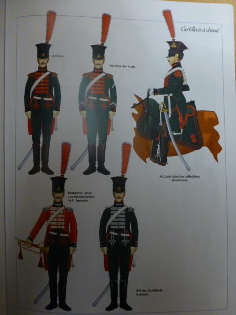 UNIFORMES des ITALIENS combattants dans l'Armée Impériale (1ère partie) P1250933