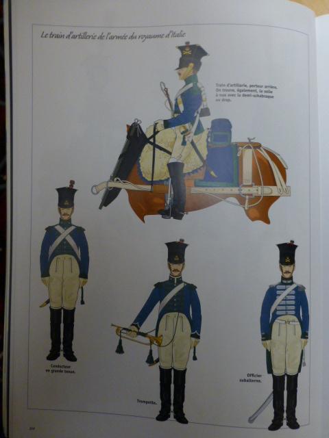 UNIFORMES des ITALIENS combattants dans l'Armée Impériale (1ère partie) P1250934