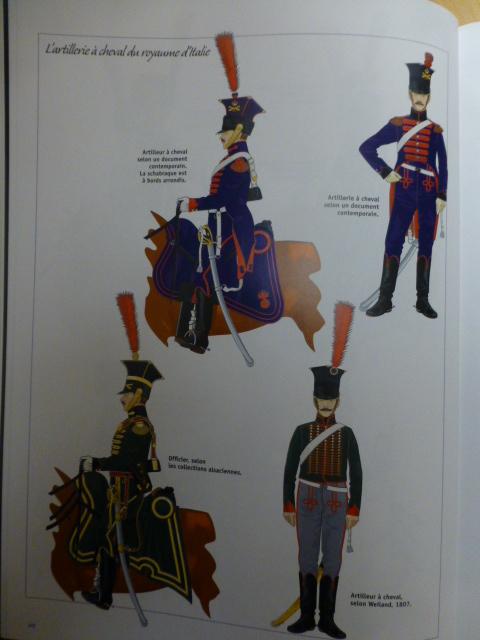 UNIFORMES des ITALIENS combattants dans l'Armée Impériale (1ère partie) P1250935