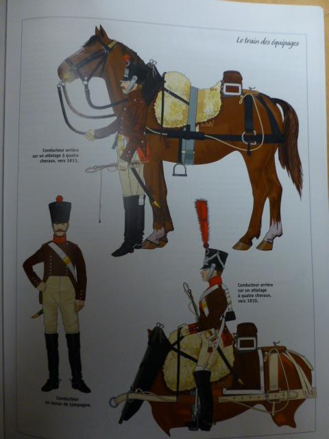 UNIFORMES des ITALIENS combattants dans l'Armée Impériale (1ère partie) P1250936