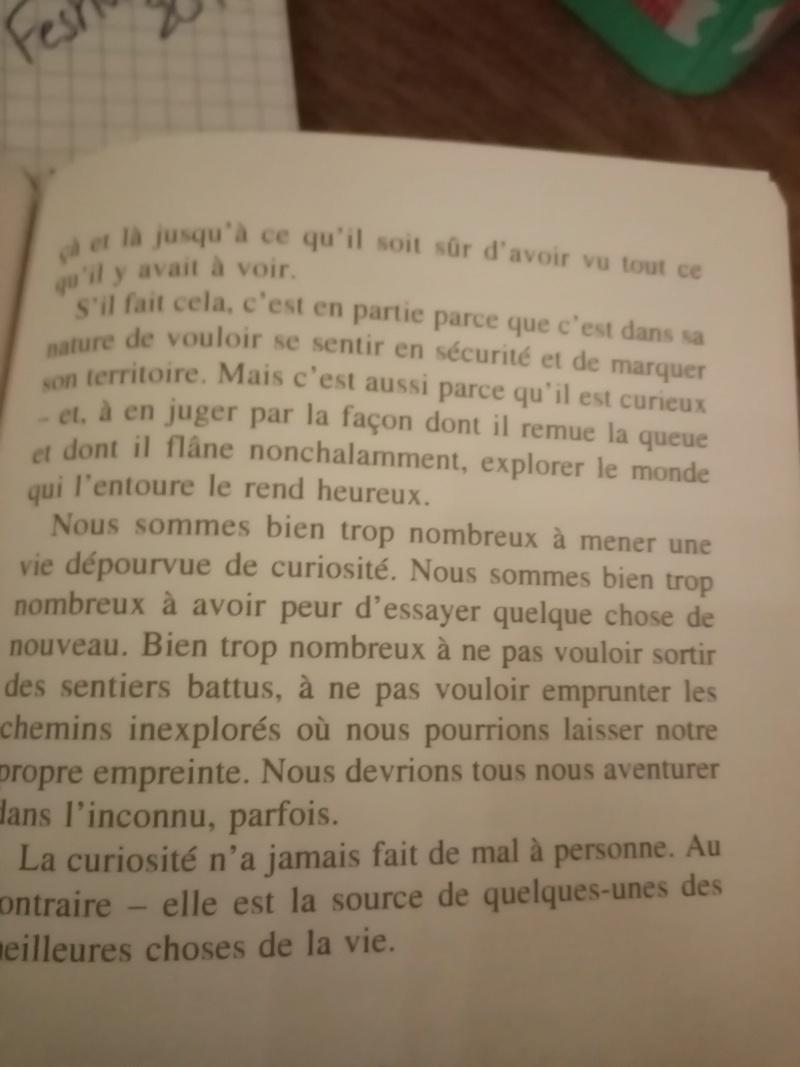 L' ordinaire-extra voyage d'une petite fille puis femme et secrétaire parmi tant d'autres. - Page 15 Img_1022