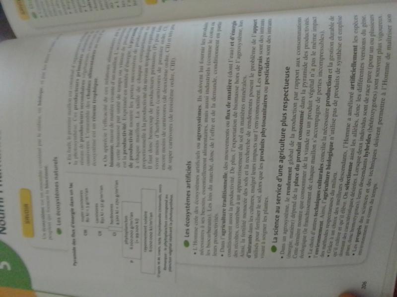 Diplôme de la vie réelle : Révisions.  - Page 2 Img_1247