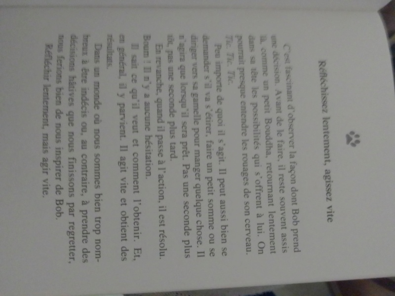 L' ordinaire-extra voyage d'une petite fille puis femme et secrétaire parmi tant d'autres. - Page 17 Img_1262
