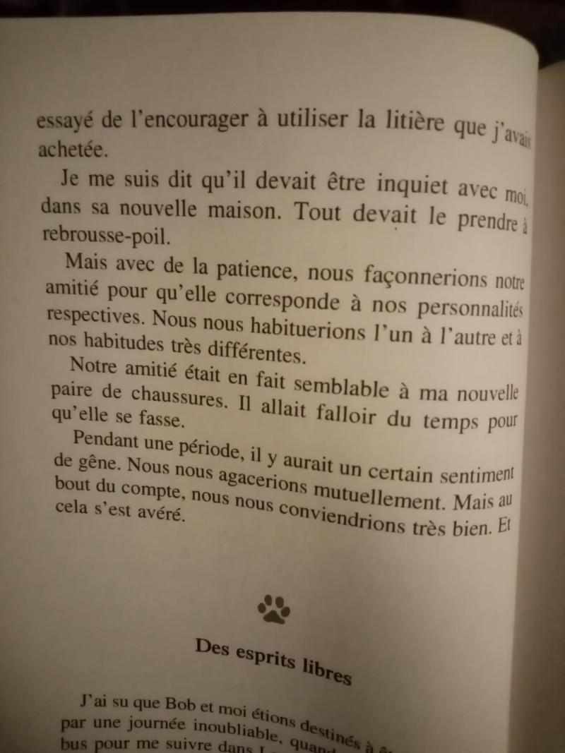 Carré cat 21. (Ewok, on y va. Re-présentation).  - Page 5 Img_1591
