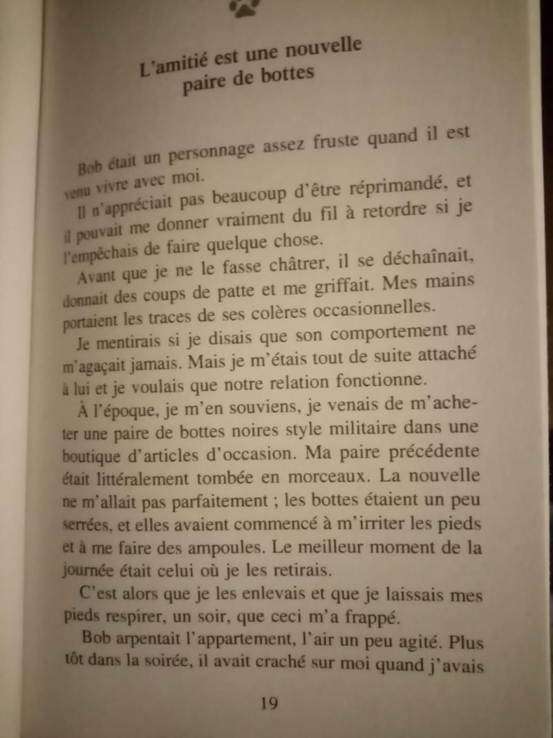Carré cat 21. (Ewok, on y va. Re-présentation).  - Page 5 Img_1592