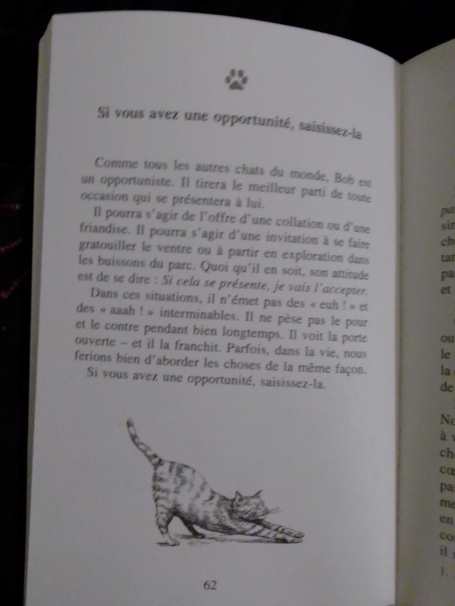 Quel ordinaire-extra voyage. - Page 14 Img_2599