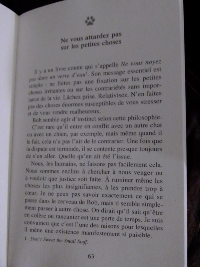Quel ordinaire-extra voyage. - Page 14 Img_2600