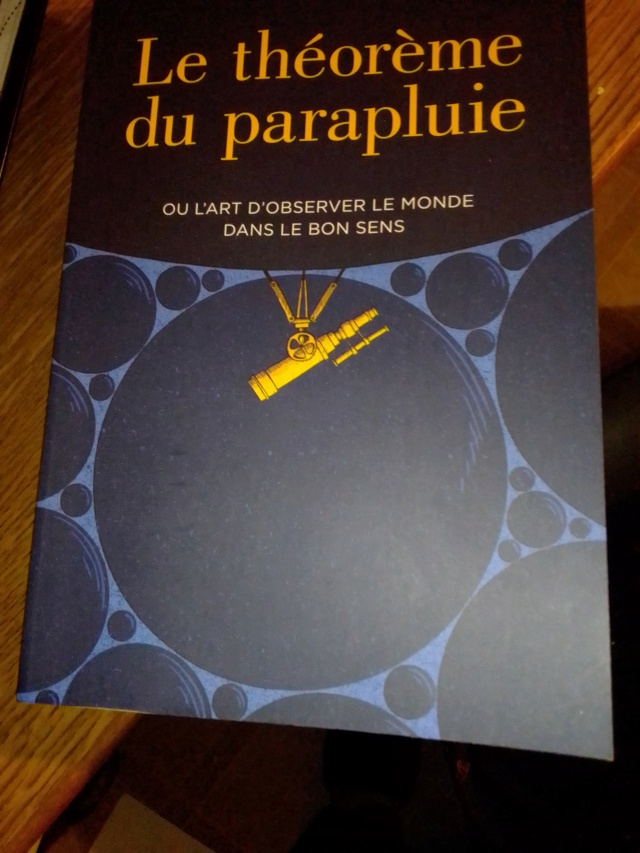 Quel ordinaire-extra voyage. - Page 14 Img_2641