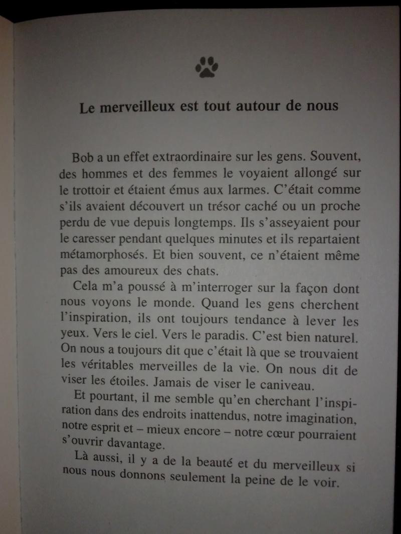 L' ordinaire-extra voyage d'une petite fille puis femme et secrétaire parmi tant d'autres. - Page 15 Img_2654
